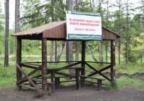 В Бурятии лесники определили места отдыха жителей