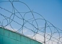 В Волгограде экс-майор полиции получил срок за мошенничество