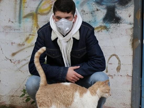 Вирус на хвосте: могут ли животные переносить COVID