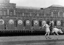 Жеребцу Жукова с парада Победы приписали ошибочную биографию