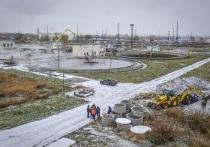 «Росводоканал Омск»: экология в приоритете