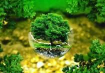 Чувашия вошла в ТОП-10 экологического рейтинга регионов