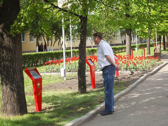 Лесоповал на Аллее Героев в Кемерове: топорно и прямо по сердцу
