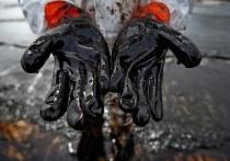 Стали известны подробности разлива нефти в Муравленко