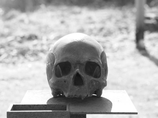 В Северной Осетии обнаружили массовое захоронение немецких солдат