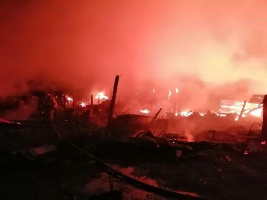 Следователи назвали причину пожара под Иркутском, где погибли четверо детей