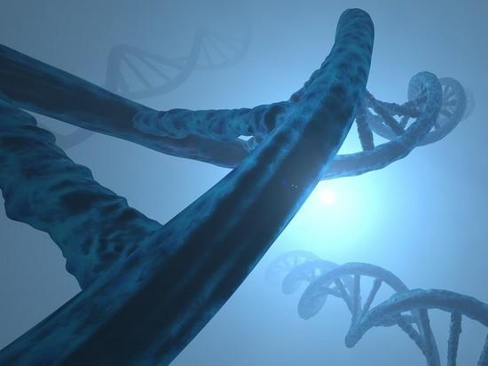 Путин приказал создать базу генетических данных России