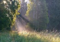 Синоптики сообщили о рекордном повышении температуры в Сибири