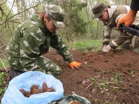 Останки 9 красноармейцев обнаружили идрицкие поисковики