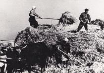 Колхозное крестьянство Саратовской области кормило фронт