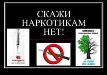 Больше половины наркопреступлений на Ставрополье связано с незаконным приобретением или хранением наркотиков