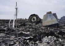 Раскрыты результаты анализа тел членов упавшего в Донбассе Boeing экипажа