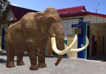 В музее Муравленко предложат посетителям 3D-экскурсию в мир ледникового периода