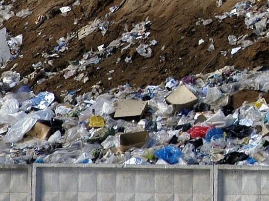Проект мусорного полигона на Шиесе закрыли