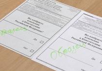 Нижний Новгород готовится к электронному голосованию
