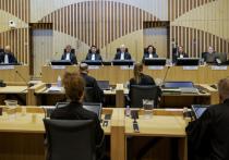 Эксперт оценил представленные в суде по MH17 в Гааге формуляры ракеты