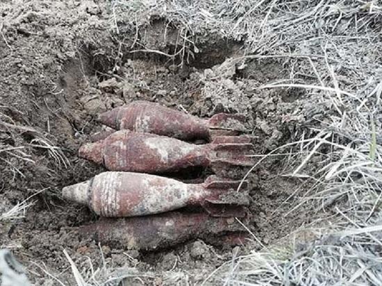 На Кубани пограничники нашли боеприпасы времен войны