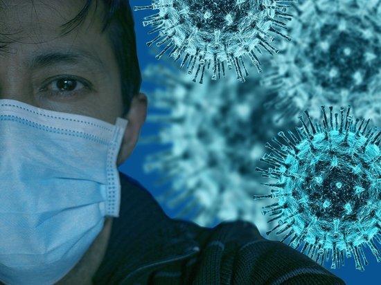 В Петербурге подсчитали новые случаи заражения коронавирусом
