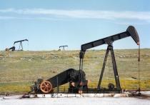 Российский экспорт нефти и газа обвалился в два раза