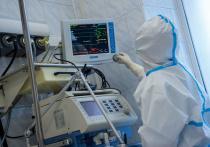 80 человек заразились COVID-19 за последние сутки на Кубани