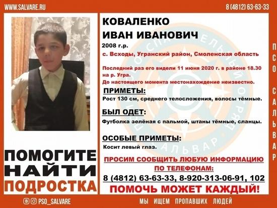 В Угранском районе Смоленской области пропал 12-летний мальчик