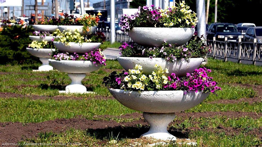 Цветущая Рязань: в Московском районе высадили семь тысяч цветов