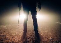 Подробности о подмосковном маньяке: 10-летнюю жертву «подсказала» жена
