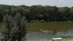 Урал у Оренбурга снова обмелел