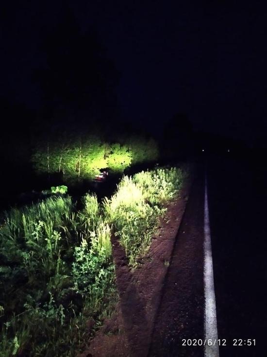 Водитель легковушки получил травмы, столкнувшись с лосем на трассе в Тверской области