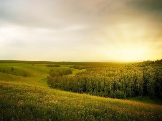 В выходные на Ямале не возникло новых лесных пожаров