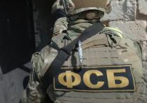 ФСБ в Волгограде предотвратила массовую бойню в школе