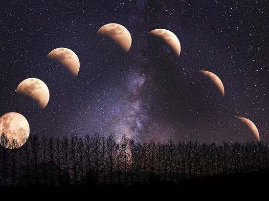 Лунный доктор: гороскоп на неделю с 16 по 30 июня
