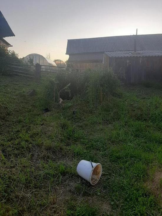 В Красноборском районе мужчина утонул в выгребной яме