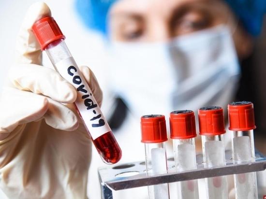 Замесили тесты: псковичи жалуются на бардак с результатами корона-анализов