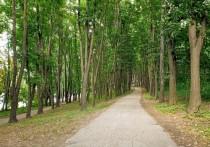 Почему кишиневцам рекомендуют гулять в немноголюдных местах?