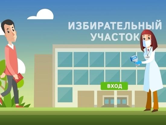Видеоинструкции выпустил ЦИК перед голосованием по поправкам к Конституции