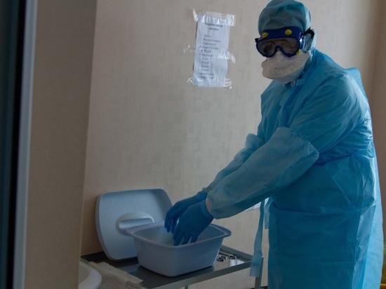 Математики рассчитали дату пика эпидемии в Новосибирске