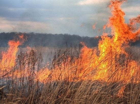 В Оренбуржье участились степные пожары