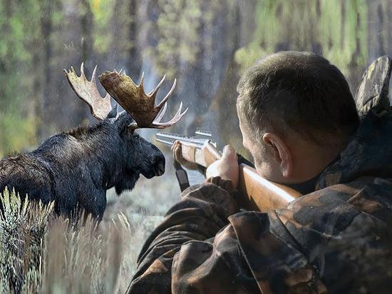 Организации кировских охотников станут социально ориентированными