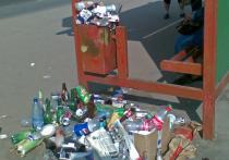 Генпрокурор РФ заявил о системных нарушениях в мусорной реформе
