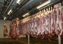 Германия: более 400 сотрудников скотобойни в Северном Рейне-Вестфалии инфицированы коронавирусом
