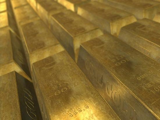 В Швейцарии ищут владельца забытого в поезде мешка с 3 кг золота