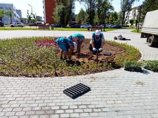 Новые цветы украсили Серпухов