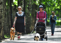 Игривые москвички объяснили хождения без масок