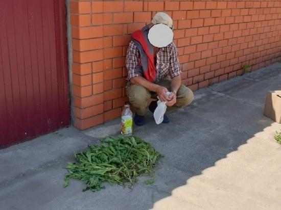 В Тамбовской области задержан «огородник», выращивающий мак