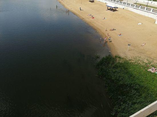Река или болото: под Оренбургом Урал зарастает тиной