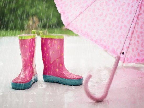 19 июня в Липецке ожидается небольшой дождь