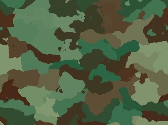 Петрозаводчанину назначили штраф за уклонение от службы в армии