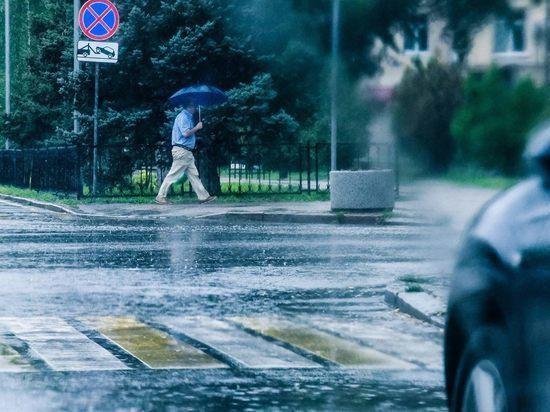 Синоптики рассказали, когда жара отпустит Волгоград