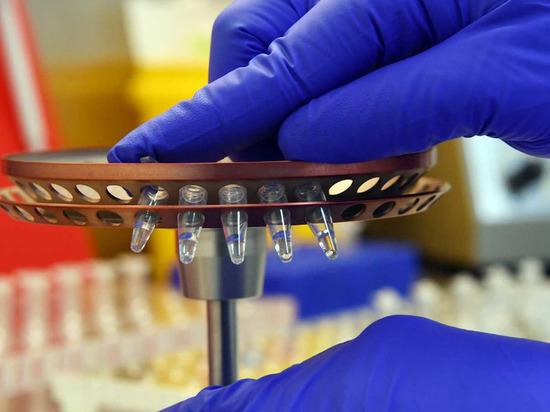 В Салехарде еще одна лаборатория начала делать тесты на COVID-19